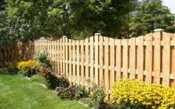 Pressure Treated Pine Fencing