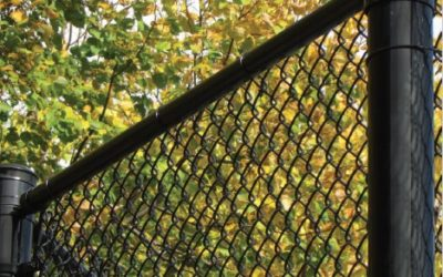Spectra Color Chain Link Fencing
